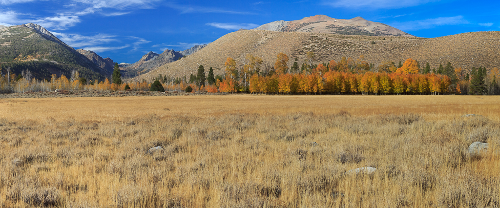 Autumn Sierra Panorama