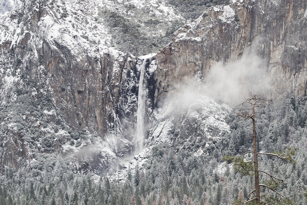Snowfall in Yosemite