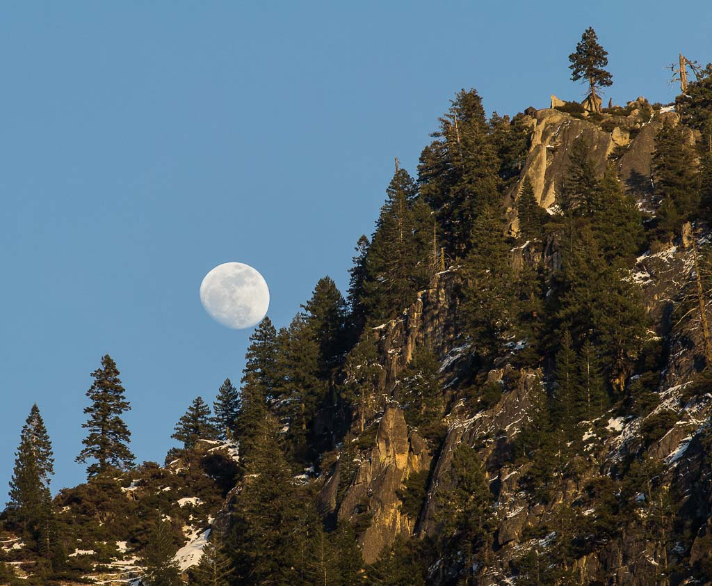 moon rise over granite and pine trees in Yosemite National Park