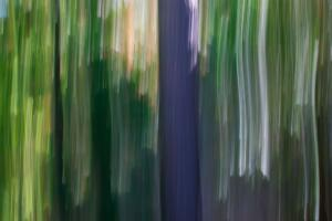 ICM Forest 3