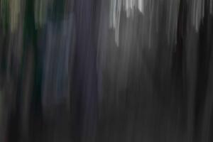 ICM Forest 1