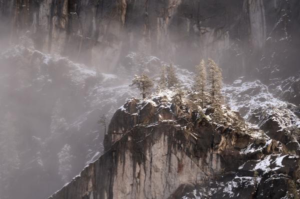 Yosemite National Park, Winter, Snow, Pine Trees, Half Dome, Sierra Nevada